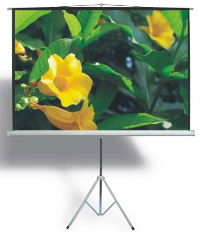 DigitMX DMX-PST86.43 Tripod Projector Screen 4:3 86 1.72x1.30