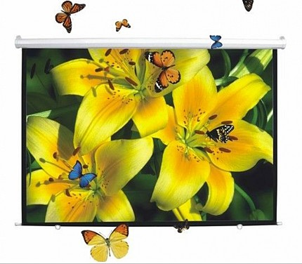 DigitMX DMX-PSM100.43 Manual Projector Screen 4:3 100 2.00x1.50